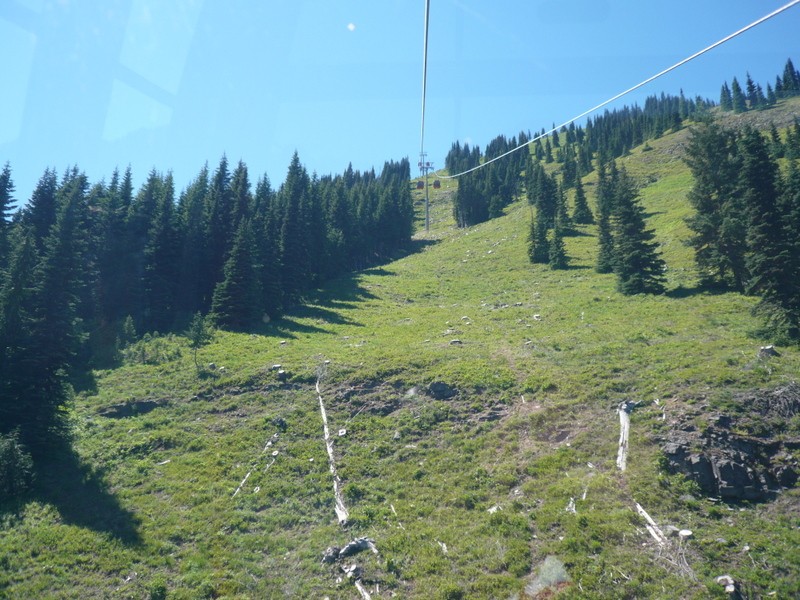 Riding the gondola up to the top of the mountain.