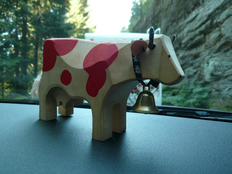 Ms. Cow going walkabout.