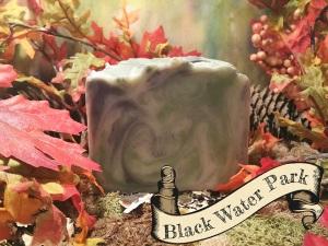 Black Water Park