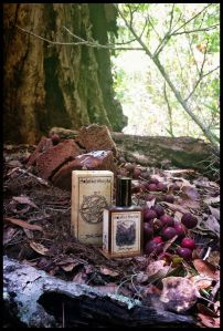 Black Forest EDP