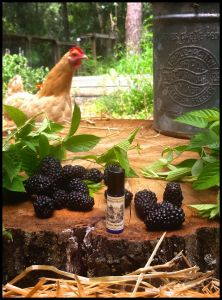 Blackburn Farmstead Perfume Oil