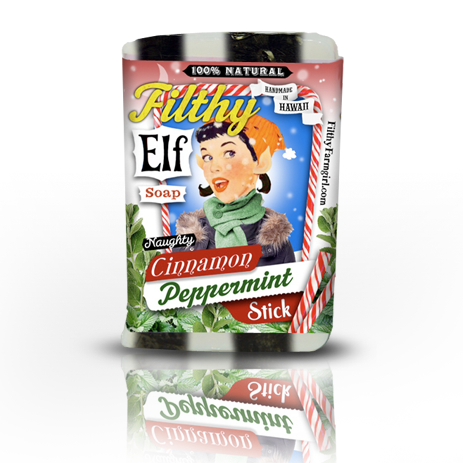 filthy elf cinnamon soap